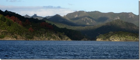 Great Barrier Island 022
