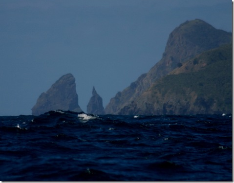 Great Barrier Island2 011